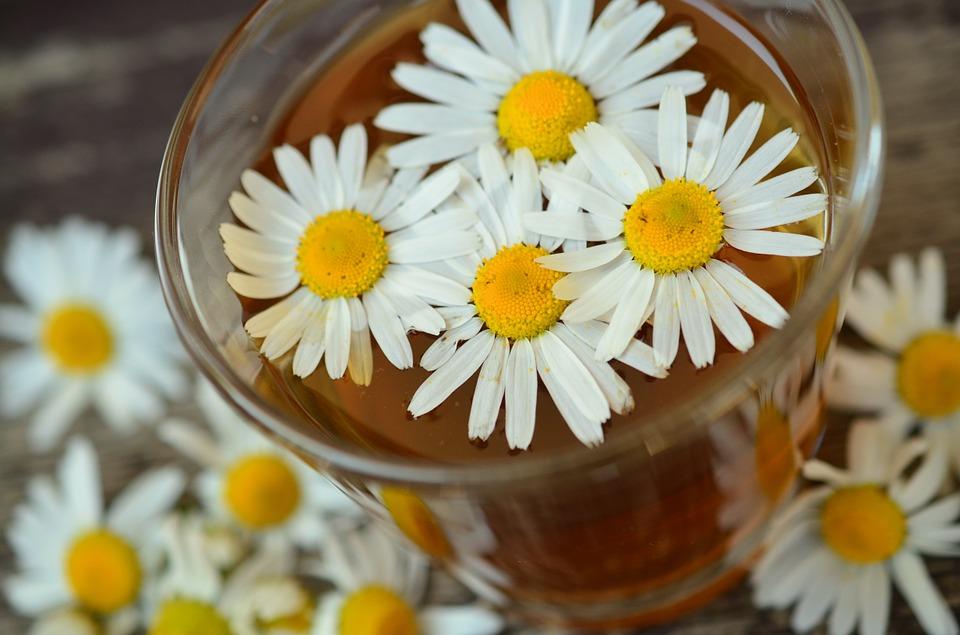 ceai de musetel pentru tenul cu probleme